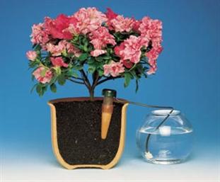 Irrigador automático para vasos
